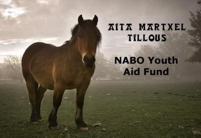El plazo de solicitud para la beca juvenil Aita Martxel Tillous de NABO se cierra el 20 de marzo