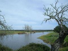 Río Tozo, Presa