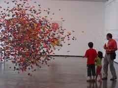 Origami, Ana Soler