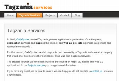Tagzania Services 2008. urteko enpresa
