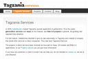 Tagzania Services empresa del año 2008