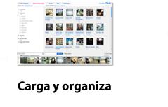 Carga y organiza