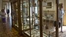 Inauguran en Barcelona el mayor museo del Cannabis del mundo