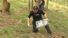Boletus edulis: Del laboratorio al bosque para ser cultivados