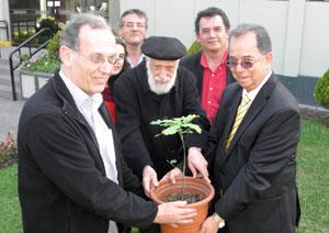 Plataron un retoño del emblemático Gernikako Arbola en el campus de la Universidad de San Martín de Porres.