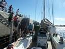 Antartidarako bidean darrai Pakea Bizkaia ontziak, Puerto Madryn-en izan ostean