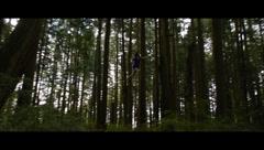 Trailer: The Twilight Saga: Breaking Dawn Part 2