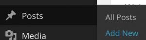 Screenshot of admin left navigation showing Posts menu selected with New Post submenu selected