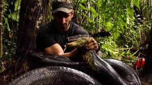 Se deja comer vivo por una anaconda mientras lleva puesto un traje especial.