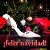 Gipuzkoa de moda_feliz navidad