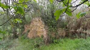 Imagen actual del batán del monasterio de Fitero.