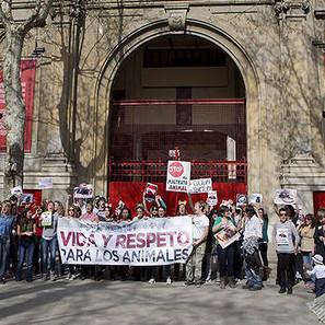 Reciente grabación de un videoclip antitaurino junto a la Plaza de Toros de Pamplona.