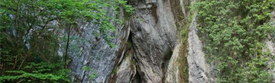 Cuevas de Balzola