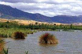 Lagunas de Laguardia, con la sierra de Cantabria al fondo