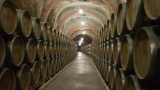 Bodegas en la Rioja: un 'must' para turistas