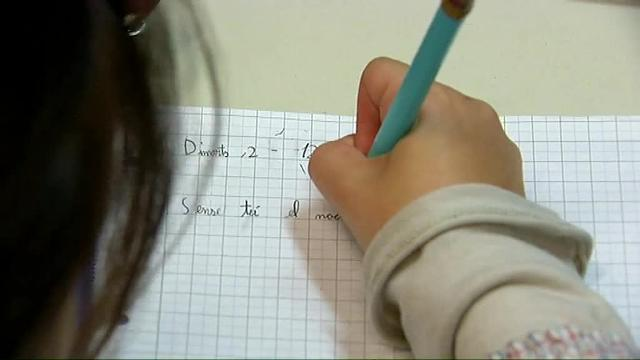 El Constitucional anula la escolarización en castellano de la 'ley Wert'