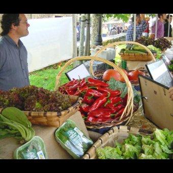 Fiesta y Feria de San Isidro en Ataun