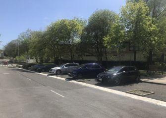 Sin árboles en las universidades