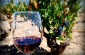 vino Belezos
