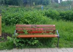 Abandono de parques