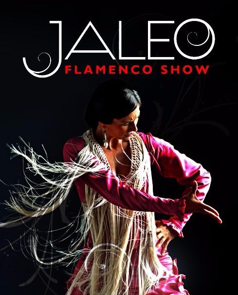 ESPECTÁCULO JALEO en Málaga